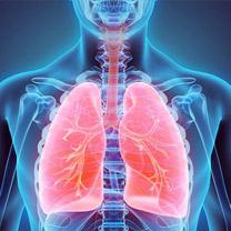 Asian Centre for Respiratory Medicine