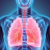 Centre for Respiratory Medicine